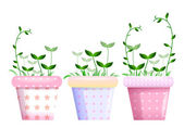 Flowerpots and leaf — Stock Photo