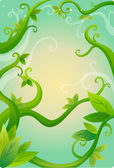 Vines and leaves — Stock Photo