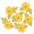 Yellow daisy flower - Stock Photo