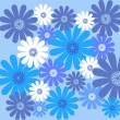 Blue daisy flower pattern — Stock Photo
