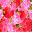 Watercolor of pink flower — Stock Photo