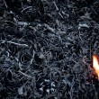 Royalty-Free Stock Photo: Ashes and fire