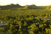 Limpopo River Valley — Stock Photo