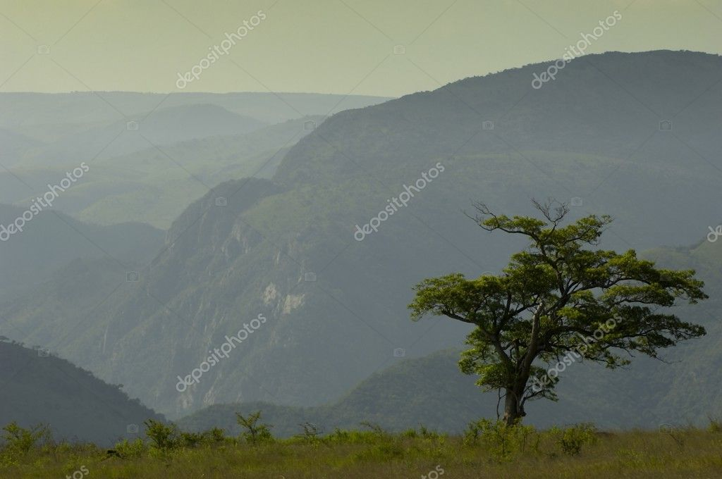 Mountain scene, Ithala Game Reserve, South Africa — Stock Photo #3132817