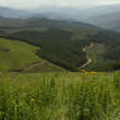 View from Long Tom Pass, South Africa — Stock Photo #3886339