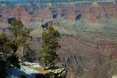 Grand canyon, arizona — Foto de Stock