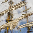 Sails — Stock Photo