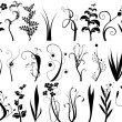 Collection of floral design elements — ストックベクタ