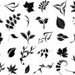 Collection of leaves — Imagen vectorial