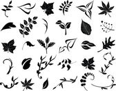 Collection of leaves — Stock Vector