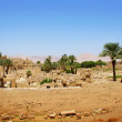 Karnak temple — Stock Photo #2864575
