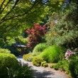 A path through Japanese garden — Stock Photo