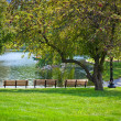 Park benches in front of pond — Stock Photo