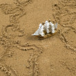 Royalty-Free Stock Photo: Ship on sand wit global map outline