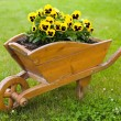 Brown barrow with yellow flowers — Stock Photo