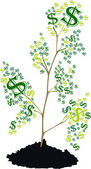 Tree with dollar symbol — Stock Photo