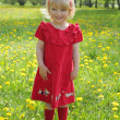 Stock Photo: Little girl in a red dress for a walk