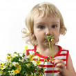 A little girl with a bouquet of flowers — Stock Photo