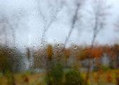 Rainy Day — Stock Photo
