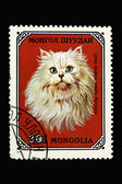 Stamp with long haired white persian cat — Stock Photo