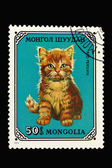 Postage stamp with red persian cat — Stock Photo