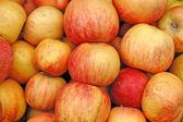 Apples wallpaper — Stock Photo