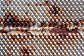 Texture of metal with rusty rivets — Stock Photo