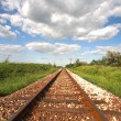 Railway Tracks - 