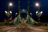 Liberty Bridge Budapest — Stock Photo