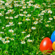 Stock Photo: Coloured eggs in meadow