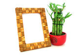 Wooden frame with baboo — Stock Photo