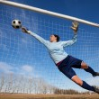 A female soccer player diving to catch the ball — Stock Photo #2965276