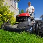 Mow the lawn — Stock Photo
