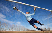 A female soccer player diving to catch the ball — Stock Photo