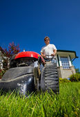 Front lawn mow — Stock Photo