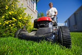 Mow the lawn — Stock Photo