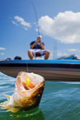 Sport fishing — Stock Photo
