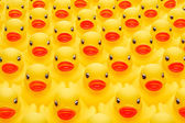 Rubber duck army — Stock Photo
