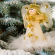 Christmas Angel — Stock Photo #2972243