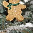 Christmas ginger bread boy on tree — Stock Photo