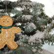Royalty-Free Stock Photo: Christmas ginger bread boy on tree