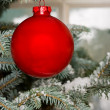 Bright red Christmas bauble on tree — Stock Photo #2972308