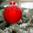 Christmas bauble on tree — Stock Photo