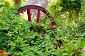 Overgrown wagon wheel — Stock Photo