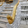 Golden demon &quot;Naga&quot; - Stock Photo