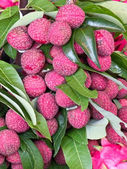 Fresh Lychees — Stock Photo