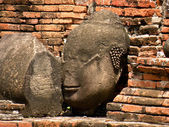 Ajutthai ruins, the head of a Buddha — Stock Photo