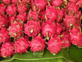 Pitaja, dragon fruit — Stock Photo