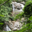 Foto de Stock  : Waterfall in jungle