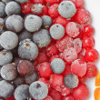 Frozen blackberry and redcurrant — Stock Photo